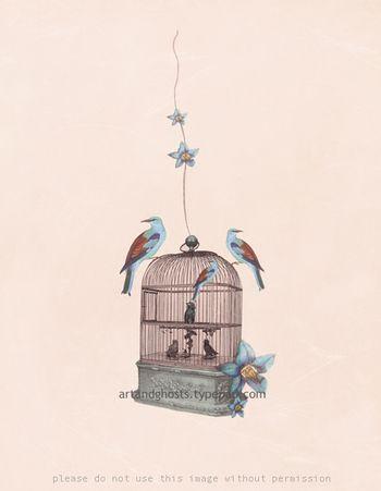 Birdcage1a small
